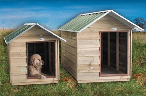 Designer Dog Kennels Melbourne